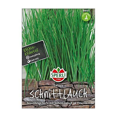 Sperli Gemüsesamen Schnittlauch Twiggy, grün