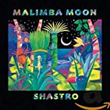 Songtexte von Shastro - Malimba Moon