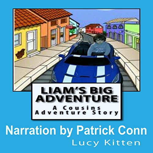 Liam's Big Adventure audiobook cover art