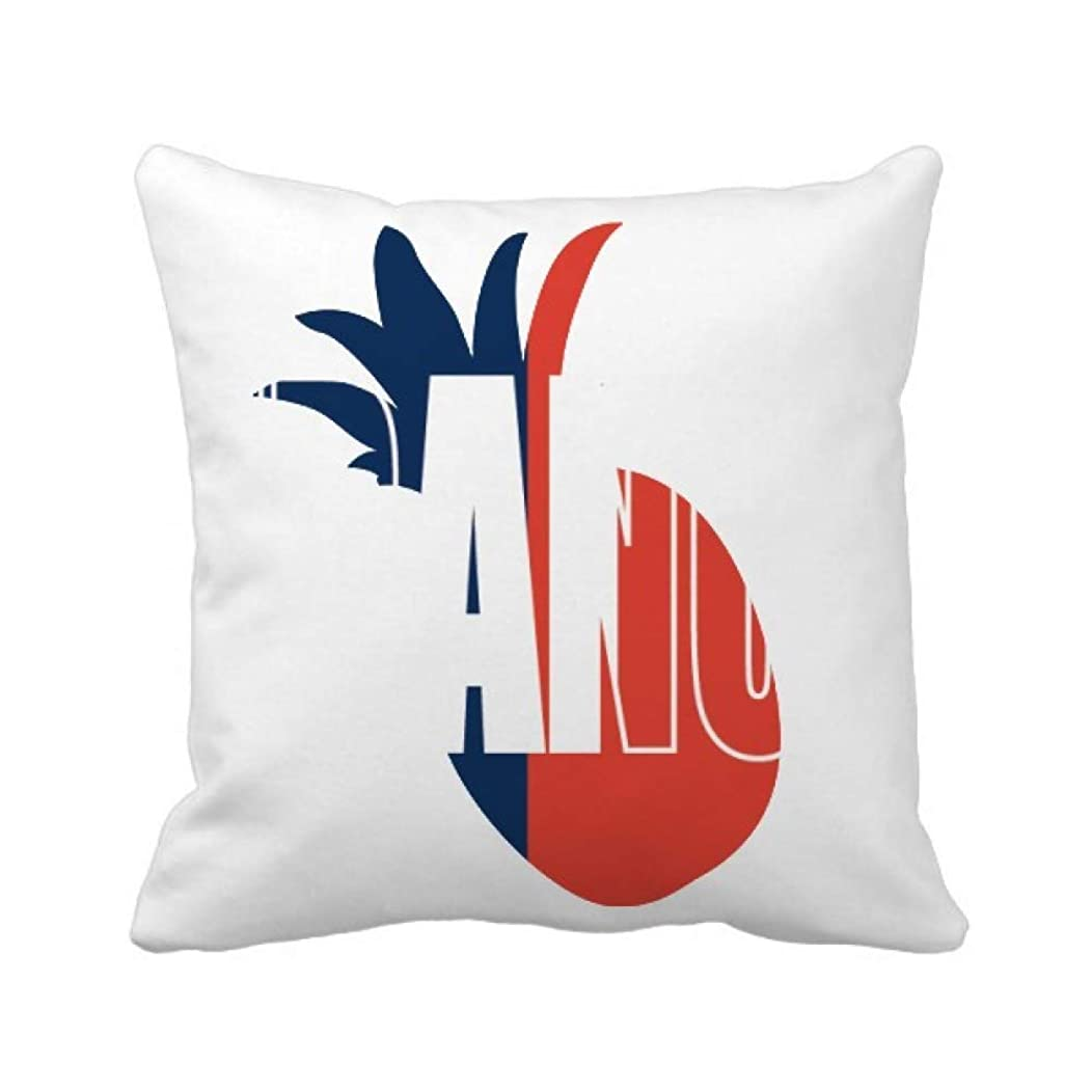 以内にショートカット意見フランスの国の旗の名 パイナップル枕カバー正方形を投げる 50cm x 50cm