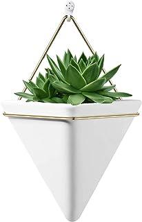 Hanging Planter Vase & Geometric Wall Decor Container - Great for Succulent Plants, Air Plant, Mini Cactus, Faux Plants an...
