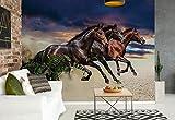 Wallsticker Warehouse Pferd Pony Fototapete - Tapete - Fotomural - Mural Wandbild - (1217WM) - L - 152.5cm x 104cm - VLIES (EasyInstall) - 1 Piece
