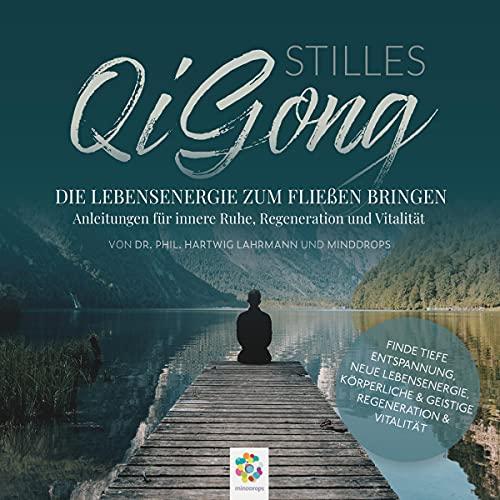 Stilles Qi Gong cover art