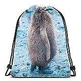 Molelanki Cute Penguins Drawstring Backpack Bag Men Women Sport Gym Sackpack For School Hiking Yoga Travel Beach 36 x 43cm / 14.2 x 16.9 Pulgadas