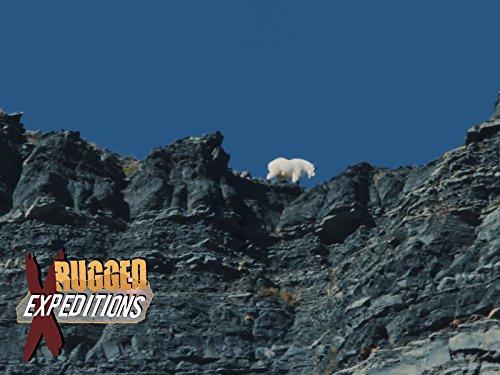 Alaska Mountain Goat Hunt with J. Alain Smith