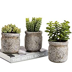 A trio of highly-realistic artificial succulent plants in ceramic pots shaped like mason jars. Each faux succulent features a different size and shape to help add visual interest to your space. Perfect for decorating any space, from your kitchen coun...