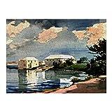Hunnry Winslow Homer Salt Kettle Bermuda Rompecabezas de 1000 Piezas para Adultos y familias, Rompecabezas clásico con Motivos Finos, colección de Arte, 50 x 75 cm