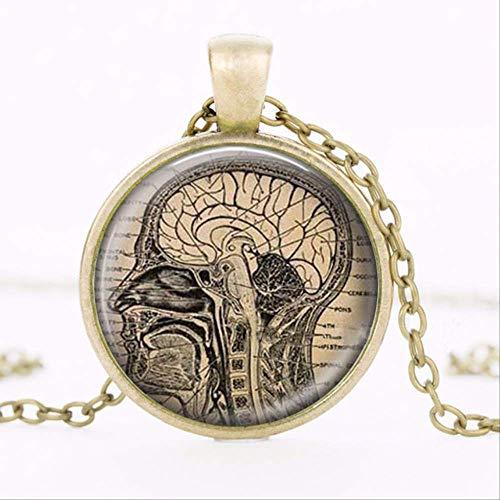 VAWAA Collar anatómico del Cerebro Colgante de anatomía Humana Collar de neurólogo Biología Regalo de Estudiante de Medicina Colgante de neurología
