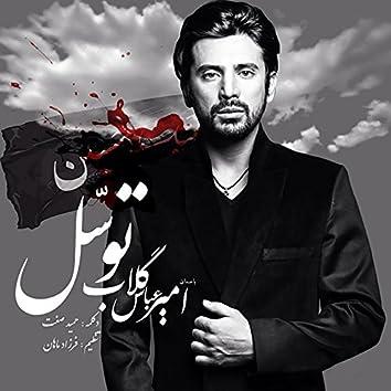 Tavasol (feat. Hamid Sefat)