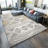 Alfombra, Anti-ácaros Rectangular Gris Antideslizante Alfombra (Color : Grey, Size : 100 * 160cm)