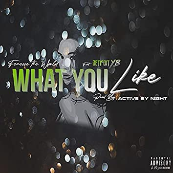 What You Like (feat. Detroit YB)