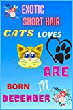 exotic short hair cat lovers are born in december: Cats :Cute Blank line Journal or Notebook With Funny Cats Print On The Cover. Cute Gift Idea For Cat lovers 122 pages