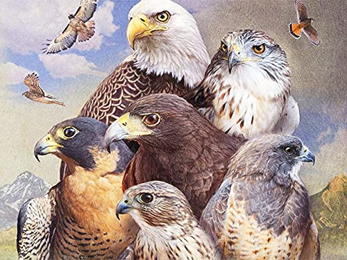 5D DIY Diamond Embroidery Eagle Animal Diamond Painting Cross Stitch Rhinestone Mosaic Home Decoration Diamond Painting A5 60x80cm