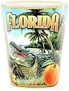Florida State Mural Shot Glass jks