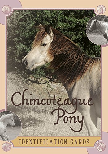 Szymanski, L: Chincoteague Pony Identification Cards