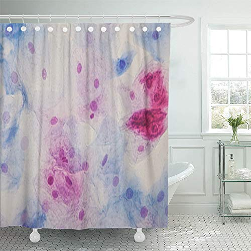 Emvency Shower Curtain Set Waterproof Adjustable Polyester Fabric Squamous Epithelial Cells Under Microscope View for Education Histology Human 60 x 72 Inches Set with Hooks for Bathroom