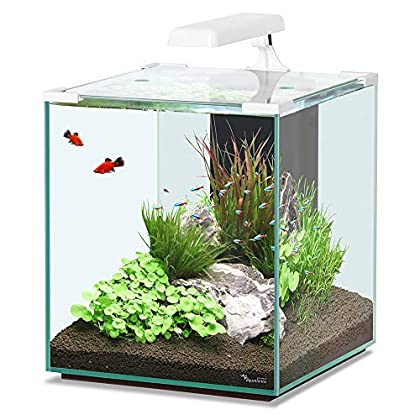 Aquatlantis Aquarium Nano Cubic 40