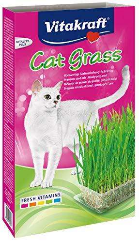 Vitakraft -   Cat Grass,