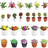 25 Piezas Plantas en Macetas de Casa de Muñecas 1:12 Planta Artificial en Miniatura Modelo Pequeño de Bonsai Figura Modelo de Mini Planta Mini Maceta Suculentas Falsas (Estilo Lindo)