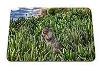 26cmx21cm マウスパッド (リスげっ歯類草) パターンカスタムの マウスパッド