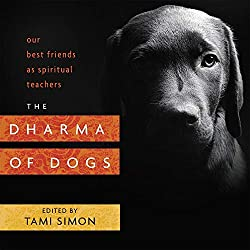 the dharma of dogs book