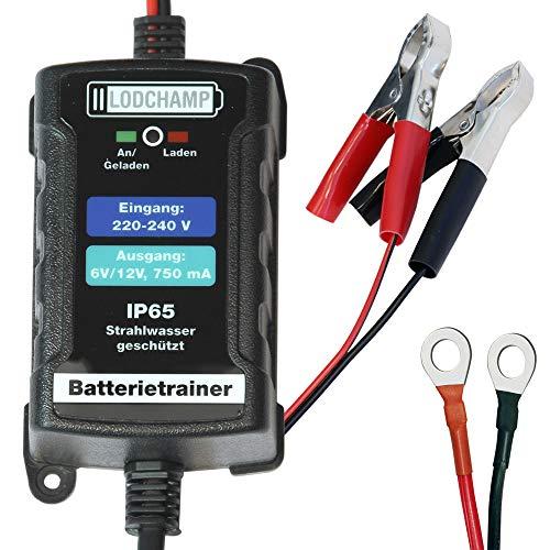 LODCHAMP 146303 Batterietrainer 6V/12V-750mAh IP65 Erhaltungsladegerät Batterieladegerät Erhaltungsgerät für KFZ Auto Motorrard Quad ATV Boot, Silber