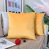 LAXEUYO Juego de 2 Terciopelo Funda de Cojine 45x45 cm Decoración Almohada Caso de la Cubierta Decorativopara Sala de Estar Sofá - Orange Yellow
