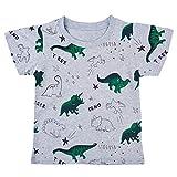 Moneycom - Camiseta de manga corta para niño con estampado de humor, camiseta de manga corta Gris 1 3-4 Años
