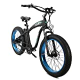 """ECOTRIC The New Model Powerful Bike Fat Tire Electric Bicycle 26"""" Aluminium Frame Suspension Fork Beach Snow Mountain Electric Bicycle 750W Motor 48V 13AH Ebike Removable Lithium Battery (Blue)"""