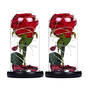Silk Flower Arrangements Mobestech 2pcs Enchanted Rose Lamp Red Silk Rose with Fallen Petal and LED Lights, Best Gifts for Her Valentines Day Mothers Day Wedding Anniversary
