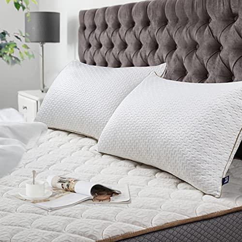 BedStory Oreillers Bambou 50x70 Lot de 2 avec Taies Antiacariens Amovibles, Oreillers Anti Acariens avec Garnissage 10% 7D et 90% 3D Fibre Polyester, Oreillers Qualité Hotel