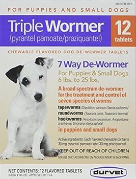 Best heartworm meds for dogs Reviews
