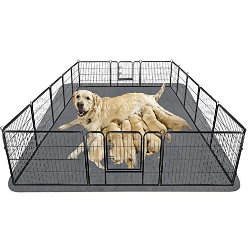 biggest puppy pads