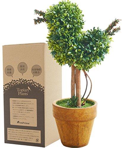 観葉植物 光触媒 キレイな空気を実感 人工 フェイクグリーン ミニ卓上インテリア 消臭効果 小鳥