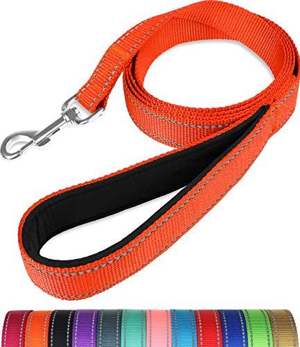 Taglory Hundeleine Reflektierend mit Weich Gepolsterter Griff und Metallhaken, Robuste Leine Hund für Kleine Mittel Große Hunde, 180cm Orange