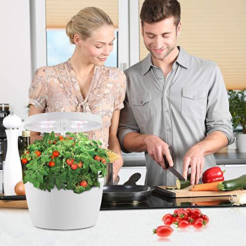 CRZJ Jardín de Hierbas para Interiores, Sistema de Cultivo hidropónico LED con múltiples Modos de plantación, jardín doméstico de Interior Ecoo Grower