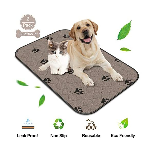 Washable Pee Pads for Dogs Extra Large, Reusable Puppy Potty Mats for Pet Training, Whelping, Housebreaking, Incontinence, Travel, Playpen, Crate   Fast Absorption   Waterproof   39.4″ x 27.6″