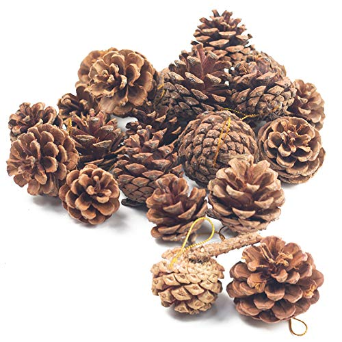 Natural Pine Cones, Christmas
