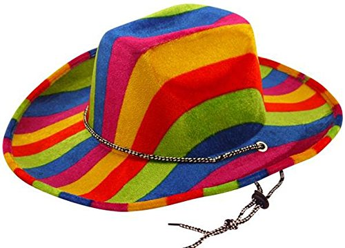 Adults Fancy Dress Accessory Mens Party Head Wear Rainbow Felt Cowboy Hat