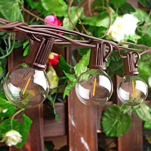 25 Ft Outdoor LED String Lights with 25 Shatterproof G40 LED Clear Globe Bulbs, Edison Vintage Bulbs Hanging Sockets, Decorative Lighting for Café Patio Porch Party Yard Christmas-Brown Wire