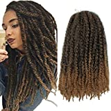 5Packs Marley Twist Crochet Hair Long Ombre Afro Kinky Curly Hair Marley Braiding Hair Extensions Synthetic Fiber Marley Braids for Twist (18inch,#1B/27)