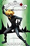 Miraculous: Tales of Ladybug and Cat Noir: Cataclysm...