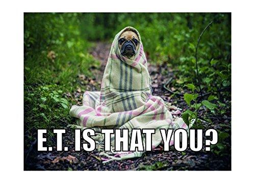 Ecool E.T. Alien is That You Cute Dog Funny Retro Shabby Chic Estilo Vintage con impresión enmarcada, Estilo Vintage (A3)