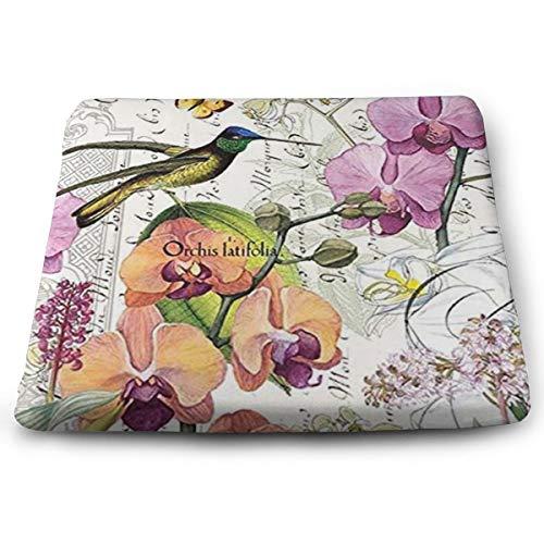 Arehji Hummingbird - Cojín de asiento cuadrado suave para decoración de silla