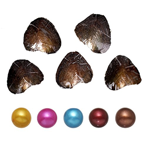 5 PC Freshwater Cultured Pearl Oyster with Pearl Inside (Round Shape) (7-8mm)
