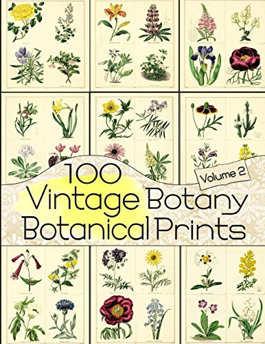 100 Vintage Botany Botanical Prints Volume 2 (Floral Ephemera Series, Band 2)