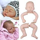 """HAIMEN Kit de muñeca Reborn sin Pintar de 20 Pulgadas con Molde para bebé Reborn, Molde para bebé con Cabeza y extremidades para muñeca de 20"""""""