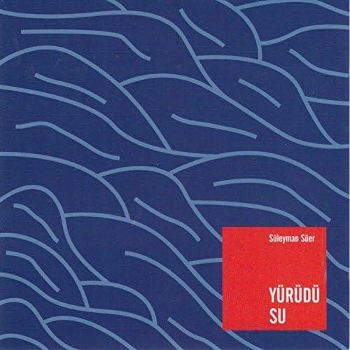 Süleyman Süer