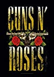 empireposter Guns N' Roses - Big Guns - Posterflagge 100%