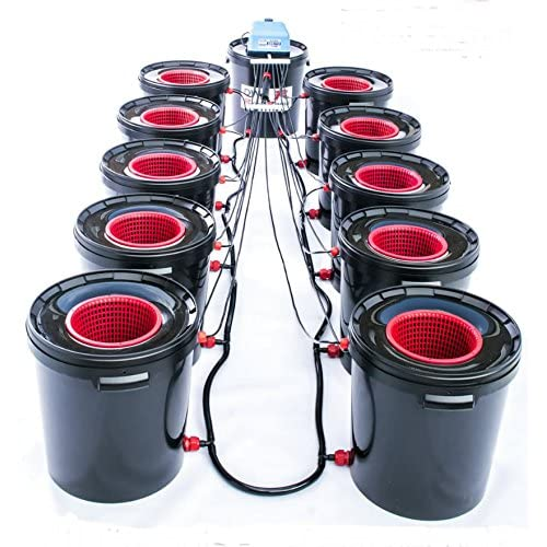 Hydroponic System: Amazon co uk